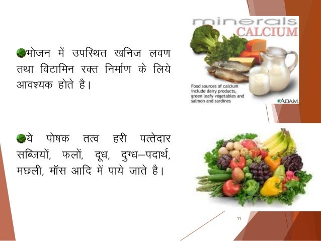 Balance diet hindi copy 11 forumfinder