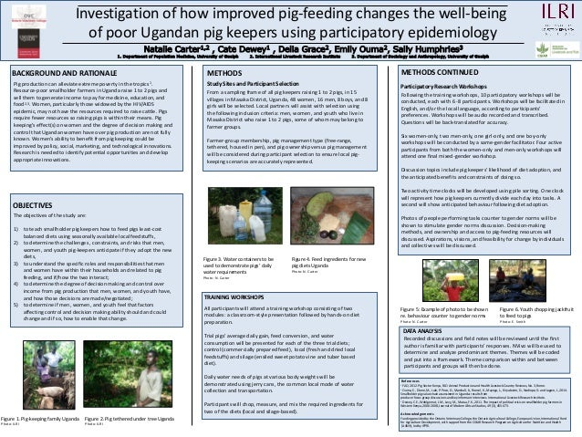 Investigation of how improved pig-feeding changes the well-being of poor Ugandan pig keepers using participatory epidemiol...