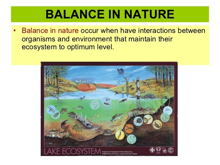 BALANCE IN NATURE <ul><li>Balance in nature  occur when have interactions between organisms and environment that maintain ...