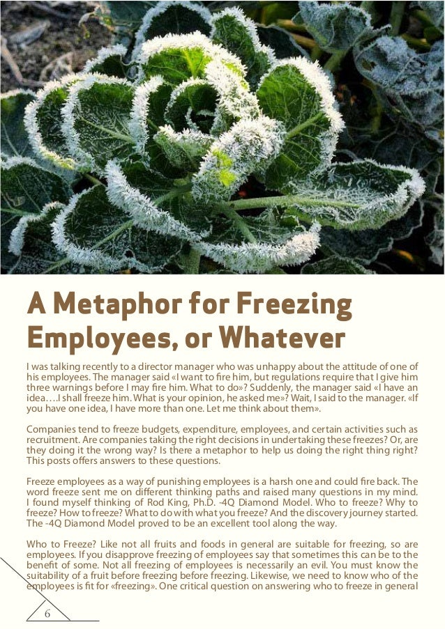 6 A Metaphor for Freezing Employees, or Whatever I was talking recently to a director manager who was unhappy about the at...