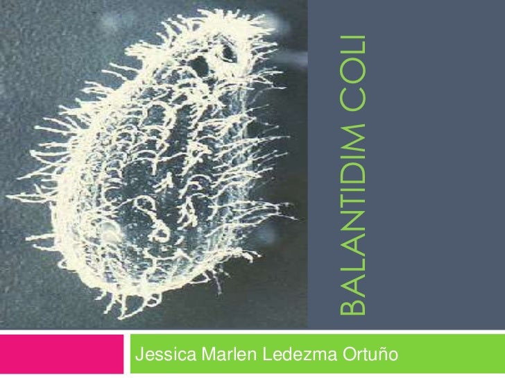 BALANTIDIM COLIJessica Marlen Ledezma Ortuño