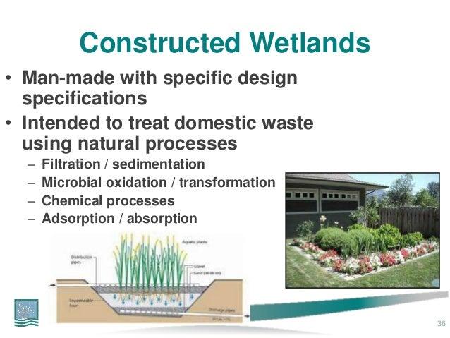 Natural Wetlands Wastewater Treatment
