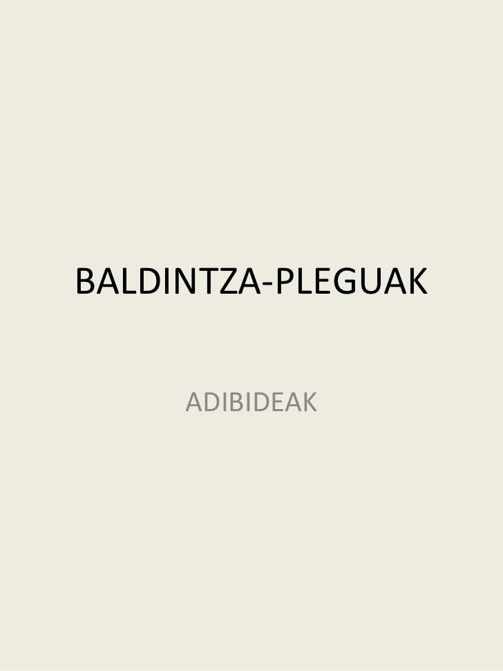BALDINTZA-PLEGUAK     ADIBIDEAK