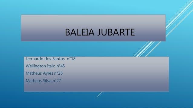 BALEIA JUBARTE Leonardo dos Santos n°18 Wellington Italo n°45 Matheus Ayres n°25 Matheus Silva n°27