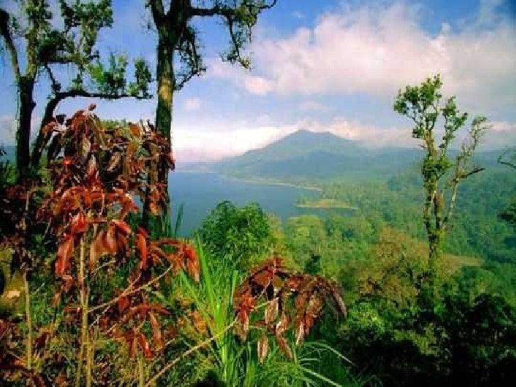Bali Slide 23