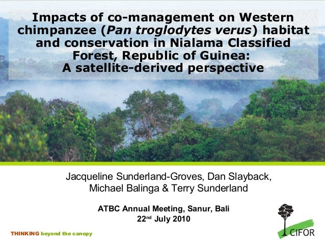 Impacts of co-management on Western chimpanzee (Pan troglodytes verus) habitat and conservation in Nialama Classified Fore...