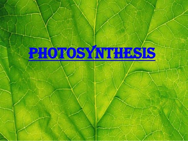 """photosynthesis   photosynthesis.  -photo comes from a Greek word           meaning """"light.""""-synthesis comes from another G..."""