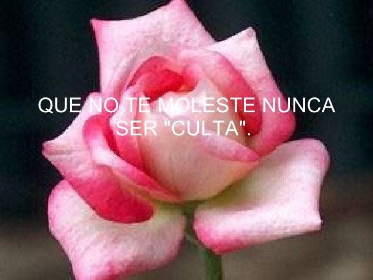 """QUE NO TE MOLESTE NUNCA SER """"CULTA""""."""