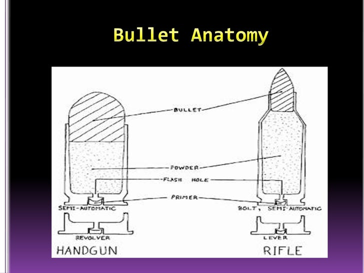 Anatomy of a bullet