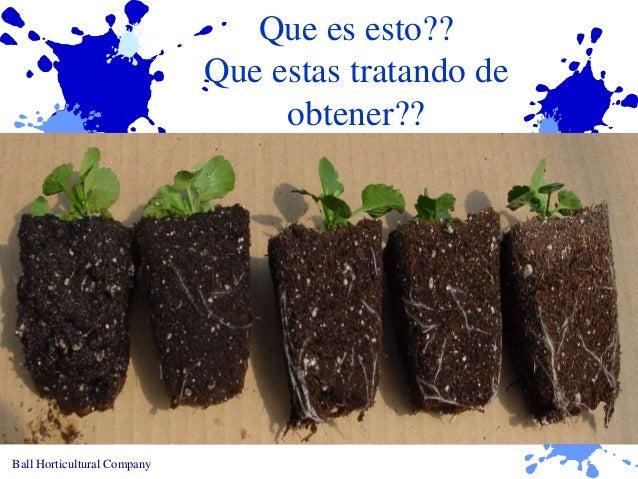 STEM Episode 21 Ball Seed Water Management Levels 1-5 - Spanish Slide 3