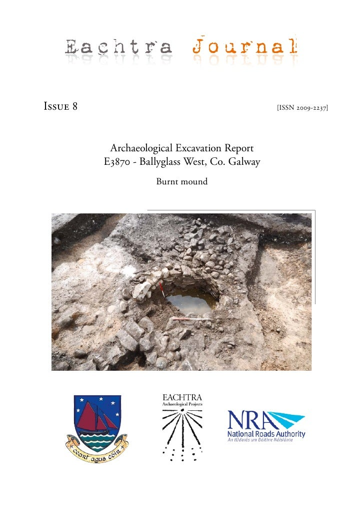 Archaeological Report - Ballyglass West , Co. Galway (Ireland)
