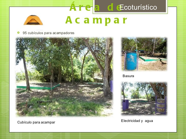Área de Acampar <ul><li>95 cubículos para acampadores </li></ul>Cubículo para acampar Electricidad y  agua Basura Ecoturís...