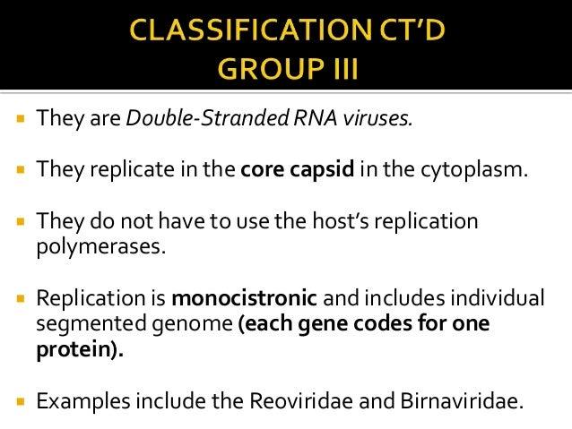 Baltimore classification of viruses presentation