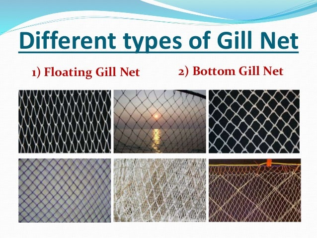 Type of fishing for Types of fishing nets