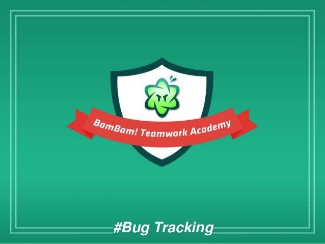 #Bug Tracking