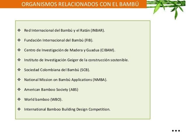 ORGANISMOS RELACIONADOS CON EL BAMBÚ  Red Internacional del Bambú y el Ratán (INBAR).  Fundación Internacional del Bambú...