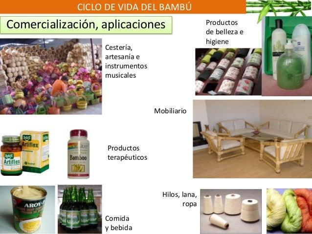 CICLO DE VIDA DEL BAMBÚ Comercialización, aplicaciones Cestería, artesanía e instrumentos musicales Comida y bebida Hilos,...