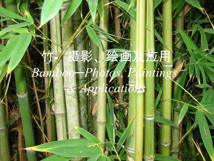 竹—摄影、绘画及应用 Bamboo─Photos, Paintings  & Applications