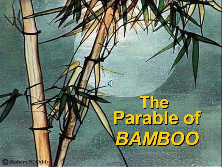 The  Parable of BAMBOO