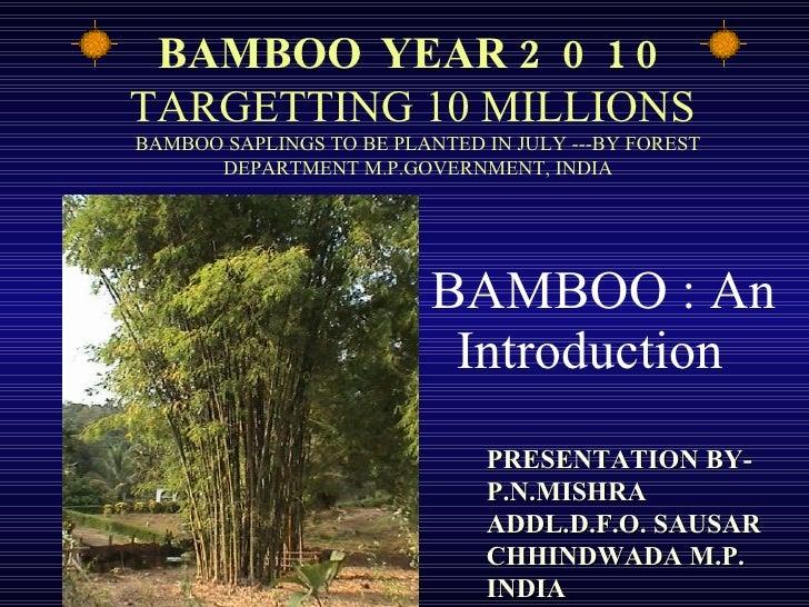 Bamboo an introduction