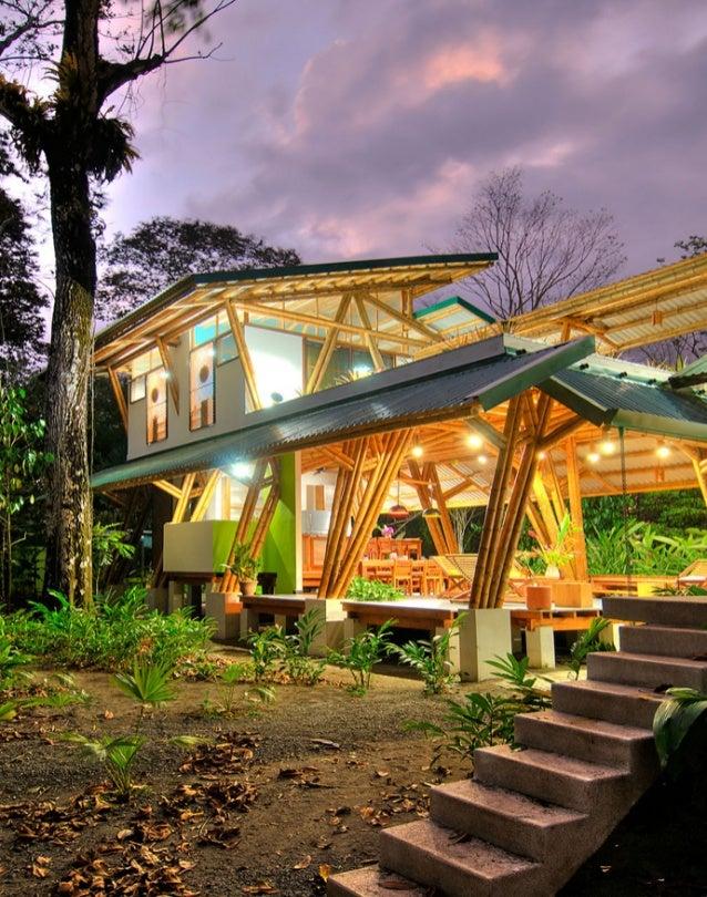 Bamboo casa atrevida