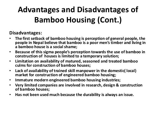 bamboo in the 21st century