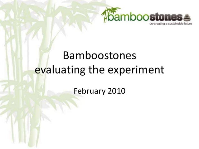 Bamboostones evaluating the experiment February 2010