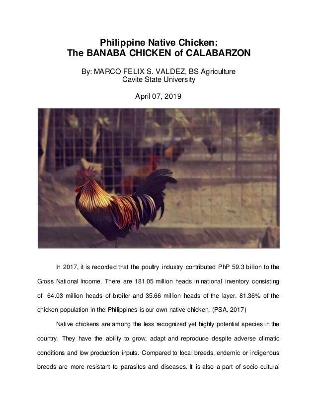 Philippine Native Chicken: The BANABA NATIVE CHICKEN of