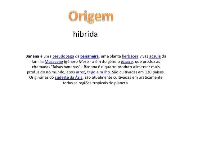hibridaBanana é uma pseudobaga da bananeira, uma planta herbácea vivaz acaule da   família Musaceae (género Musa - além do...