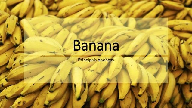Banana Principais doenças