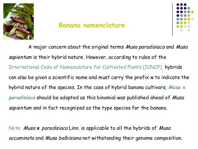 Banana Genomic Classification