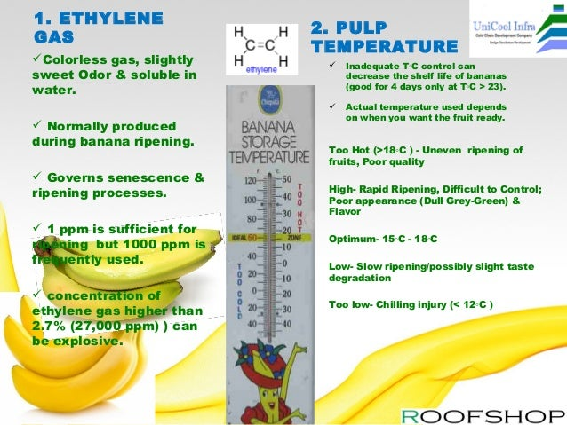 Banana ripening plant manufacturer by uni cool infa systems