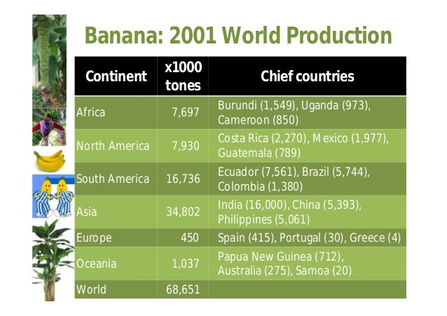 Plantain: 2001 World Production  Continent X 1000  tones Chief Countries  Africa 20,579 Uganda (9,533), Ghana (1,932),  Ni...
