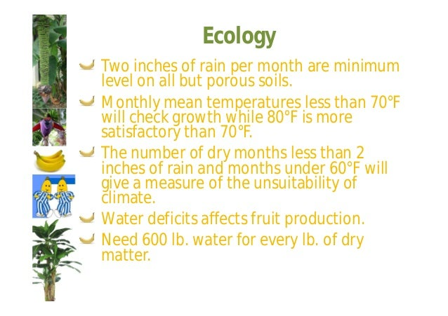 Ecology  Tropical soils lose organic matter rapidly  and nitrogen tends to be deficient all of the  time.  There is rather...