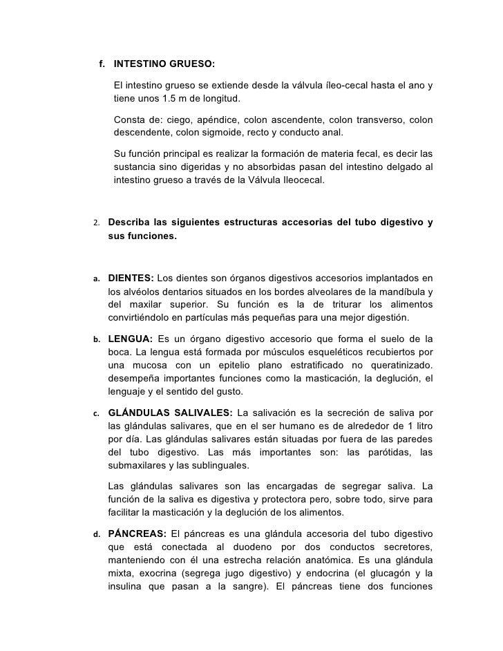 Encantador Banco De Preguntas Anatomía Galería - Anatomía de Las ...