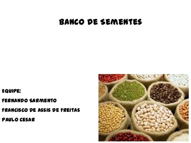 Banco de Sementes Equipe: Fernando Sarmento Francisco de Assis de Freitas Paulo Cesar
