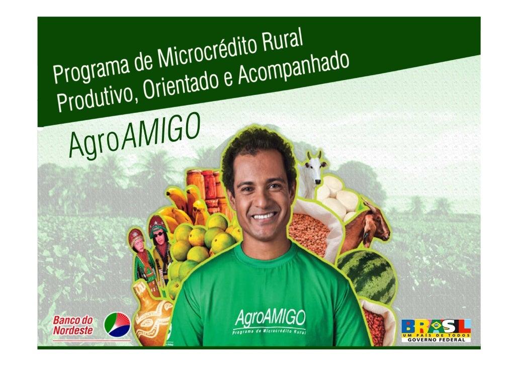 Razões para o surgimento do AgroAMIGO    Alta concentração em atividade agropecuária   Baixo nível de orientação e acompan...