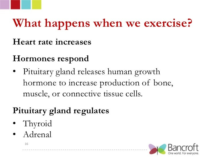 Heart Health: How Does Heart Rate Change with Exercise?