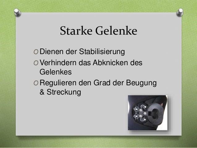 Bandagen Ratgeber Ausgabe 1 Kniebandagen www.physioroom.de Slide 3