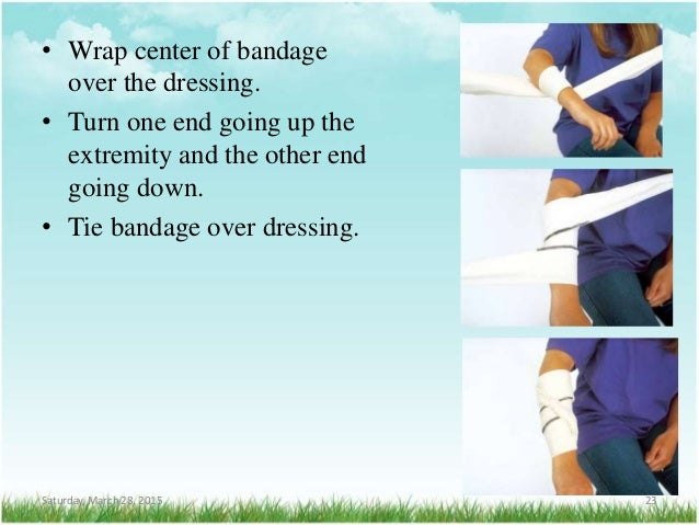 • Wrap center of bandage over the dressing. • Turn one end going up the extremity and the other end going down. • Tie band...