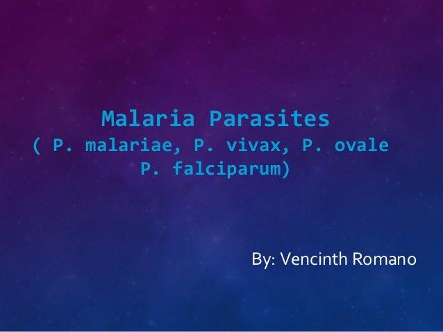 Malaria Parasites ( P. malariae, P. vivax, P. ovale P. falciparum) By: Vencinth Romano