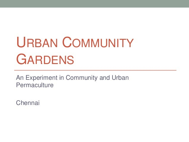 URBAN COMMUNITY GARDENS An Experiment in Community and Urban Permaculture  Chennai