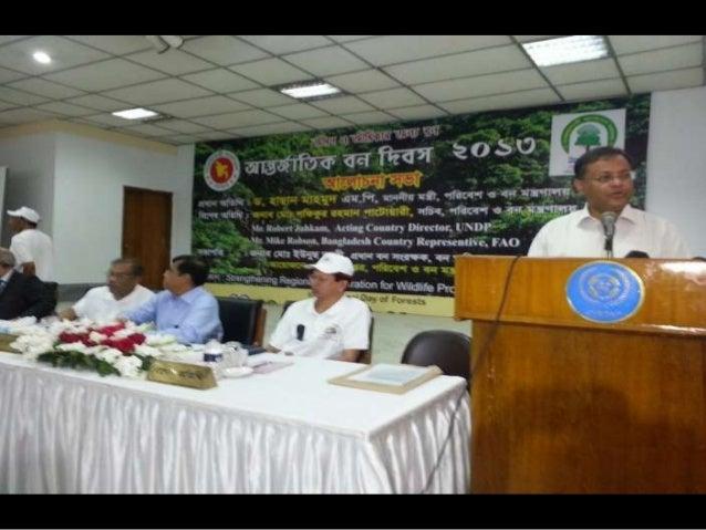 Bangladesh icc photos