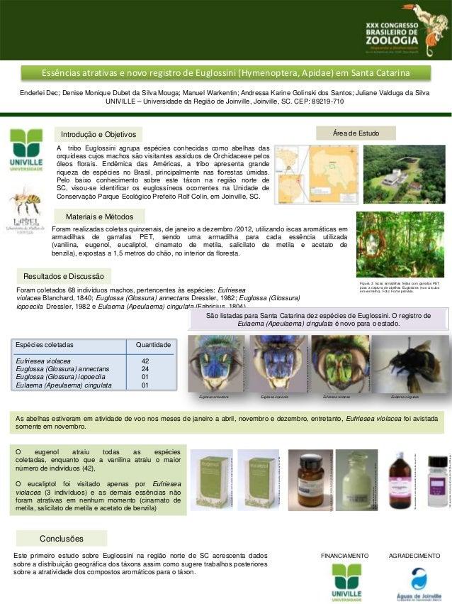Essências atrativas e novo registro de Euglossini (Hymenoptera, Apidae) em Santa Catarina Enderlei Dec; Denise Monique Dub...