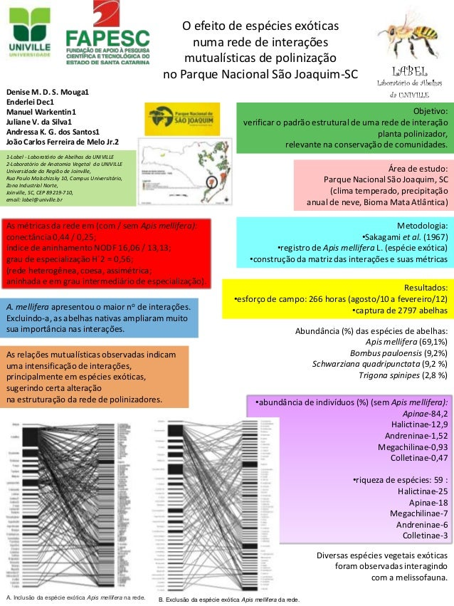 A. Inclusão da espécie exótica Apis mellifera na rede. B. Exclusão da espécie exótica Apis mellifera da rede. O efeito de ...