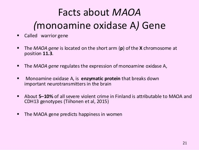 """warrior gene At the time, geneticists determined that albertani carried a low-activity for  monoamine oxidase a, nicknamed the """"warrior gene,"""" suggesting."""
