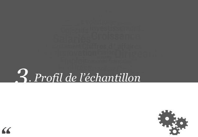 3. Profil de l'échantillon