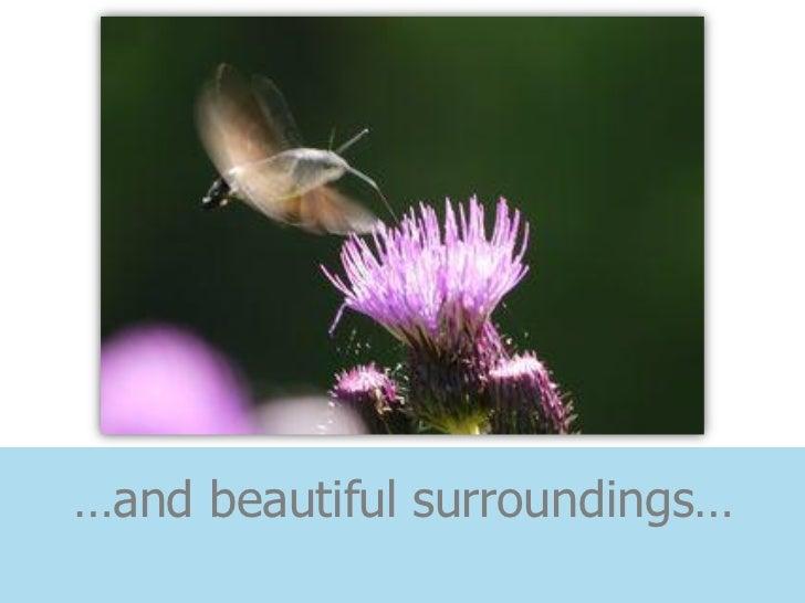 …and beautiful surroundings…
