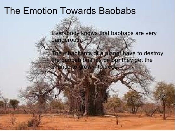 Baobab Symbolism Presentation