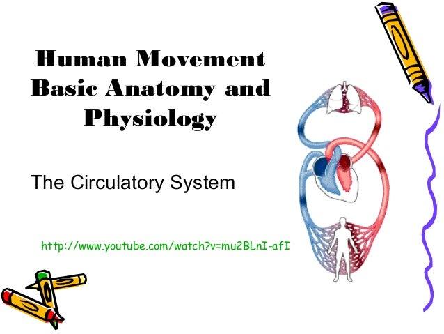 Human Movement Basic Anatomy and Physiology The Circulatory System http://www.youtube.com/watch?v=mu2BLnI-afI